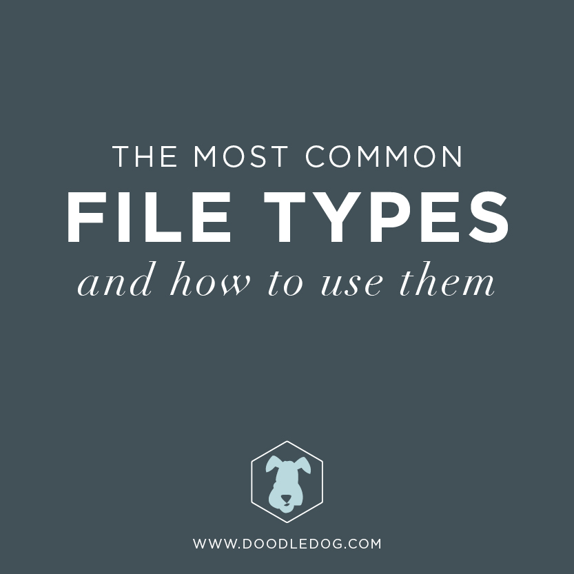 The most common file types and how to use them